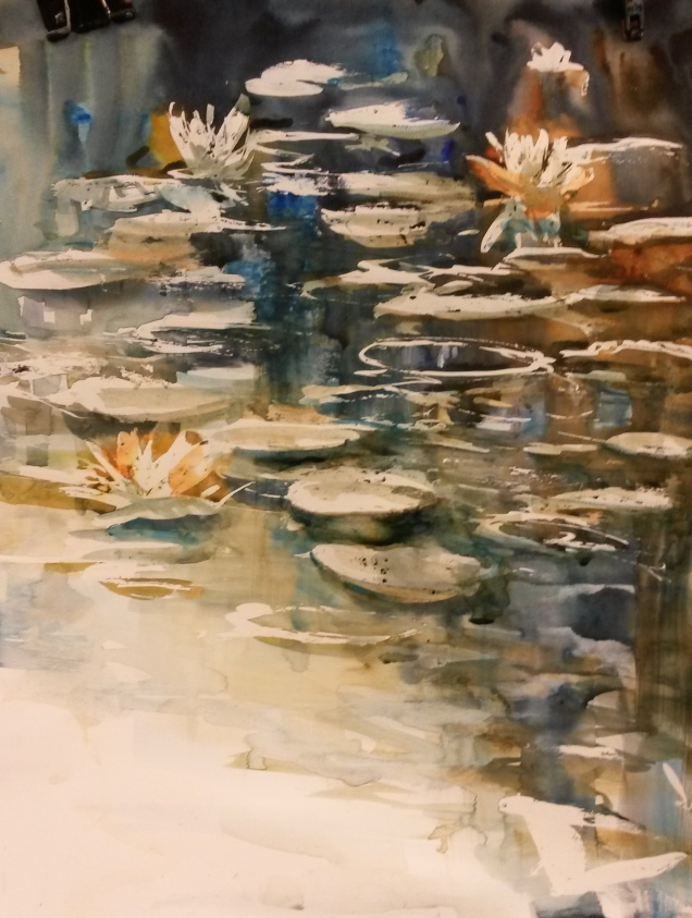 WaterLilies6a