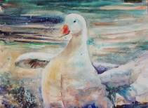 Goose Watercolour Paint